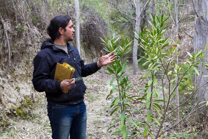 Kristus pasakoja apie Kipro kalnų augalus / Foto: Kristina Stalnionytė