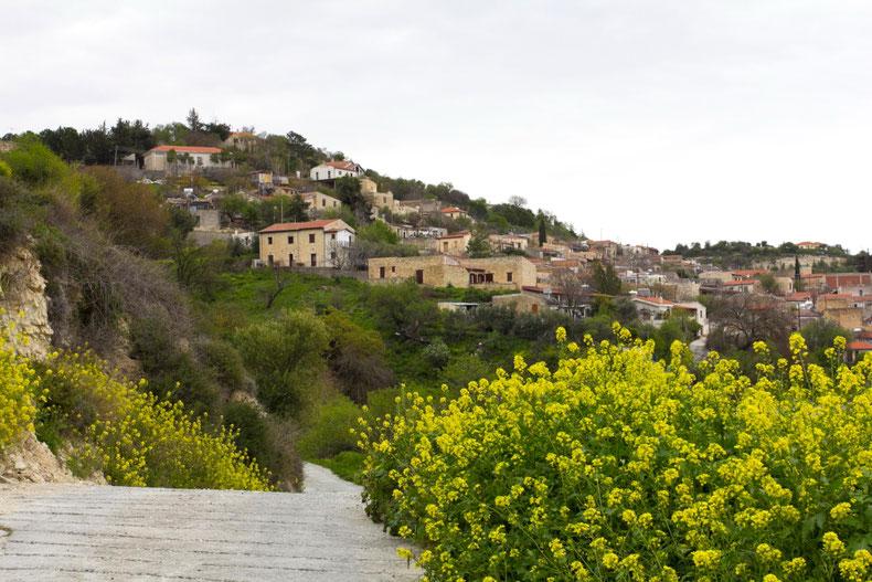 Arsos kaimas pavasarį Kipre