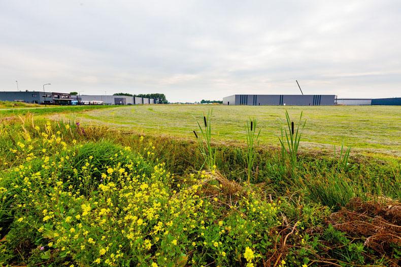 Foto: van Greenfield tot bedrijventerrein met parkmanagement.