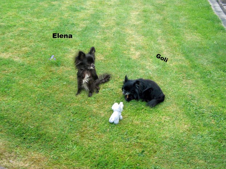 Goli und seine Schwester Elena