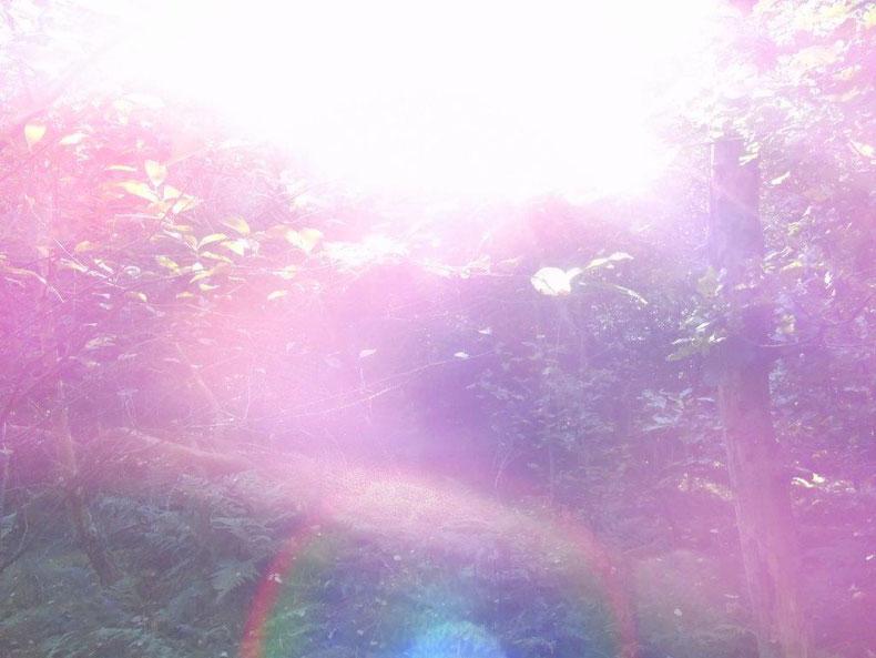 Liebesschwingung in Bewegung, www.lichtwesenfotografie.com