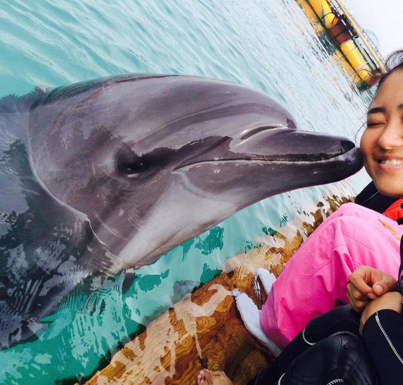 沖縄石垣島のドレスじゃないリゾートコスプレキャバクラ[CAMP META-CAT] イルカさん