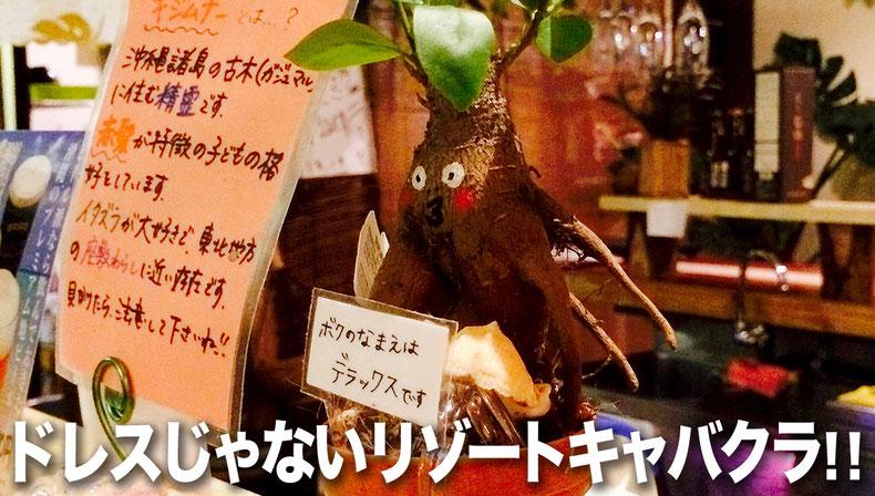 石垣島のドレスじゃないリゾートコスプレキャバクラ「CAMP META-CAT」キジムナーの台所