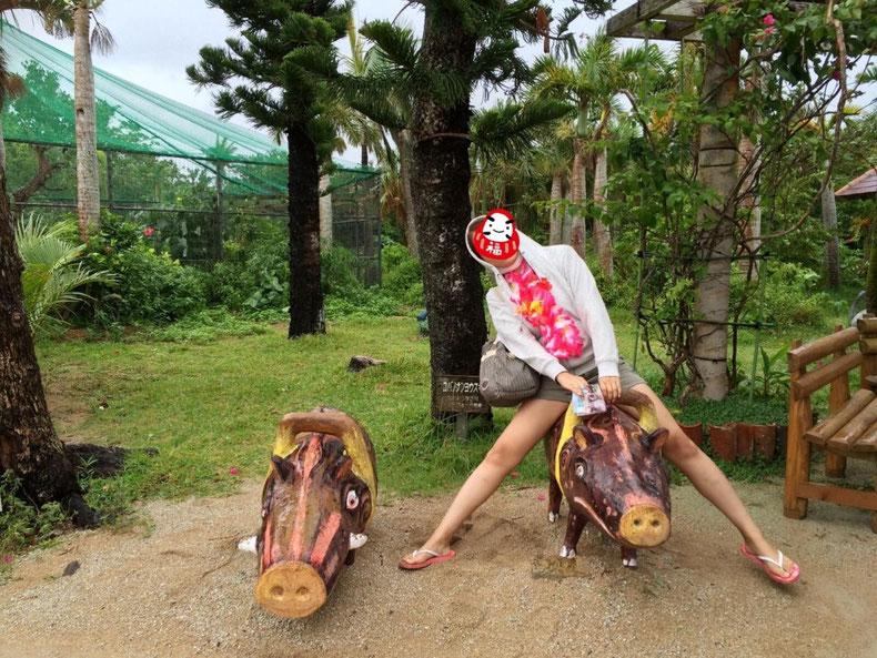 沖縄石垣島のドレスじゃないリゾートコスプレキャバクラ[CAMP META-CAT] 西表島