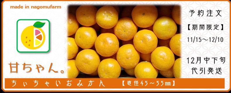 ちぃちゃいおみかん『甘ちゃん。』販売 和×夢 nagomu farm