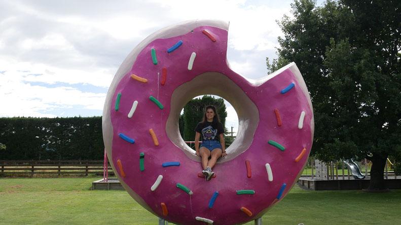 Pause lol dans la ville de Springfield, dans laquelle on trouve le donut de Homer Simpson. Doh !