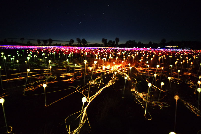 The field of lights close to Uluru