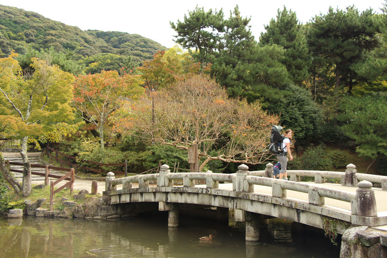 Kyoto - 7 Day Itinerary For Active Families with Small Kids - Maruyama Park
