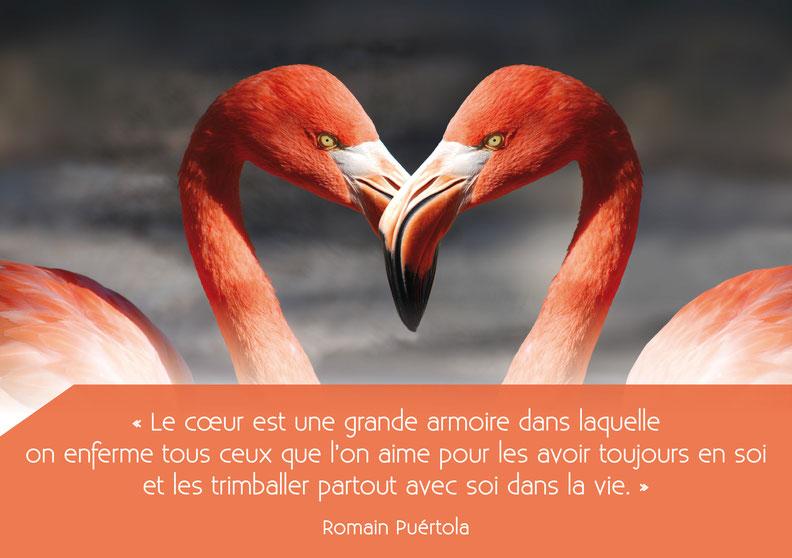 Citation de Romain Puértola - extrait de : La petite fille qui avait avalé un nuage grand comme la Tour Eiffel