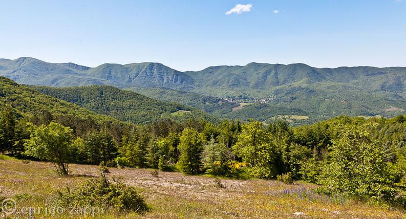 Panorama sul Parco delle Foreste Casentinesi con vista su Castagno d'Andrea dal Passo dei Tre Faggi.