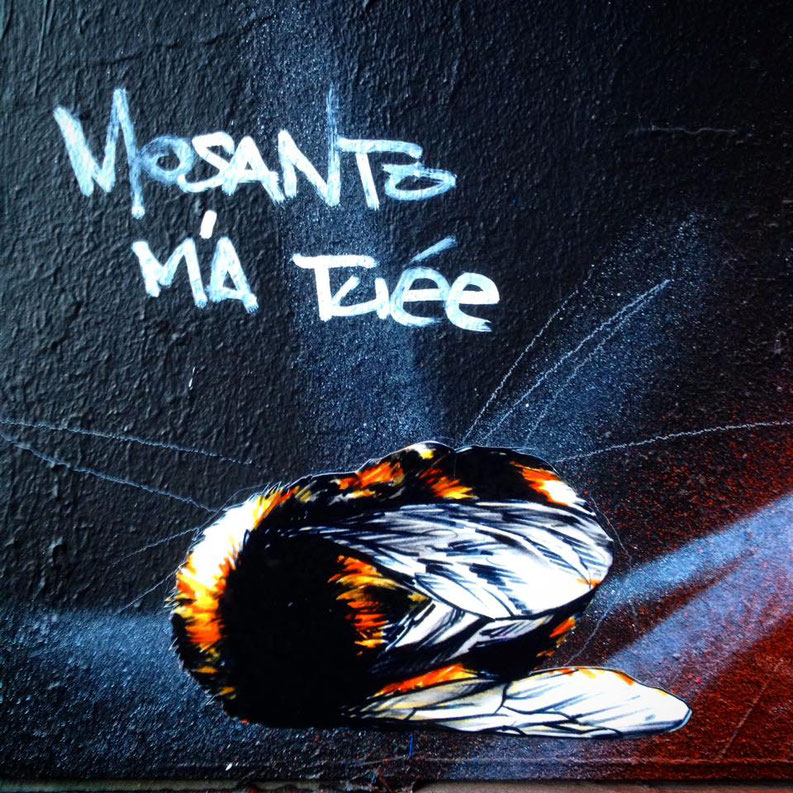 street-art-contre-monsanto-ce-sale-fdp-enjoy-ta-balise-alt.jpg