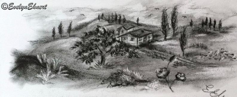 Evelyn Ehnert Kohle - Zeichnung auf Leinwand; Maße ca. L. x H. ca. 50x20cm / Titel: Toscana Bild