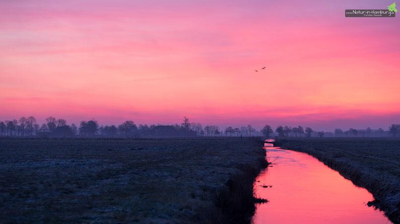 Morgentliches Himmelglühen bei frostigen Temperaturen