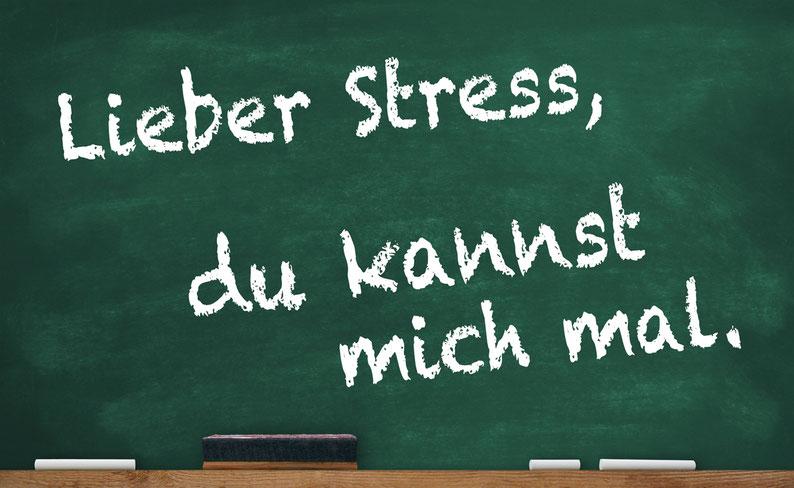 Lieber Stress, du kannst mich mal. Stressmanagement-Seminare und Burnout-Prävention Wolfgang C. Reschke