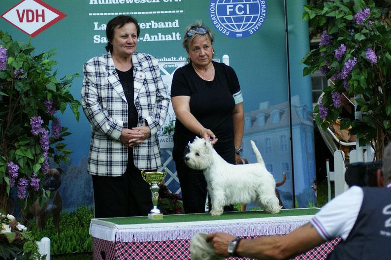 Richterin Timmy Ralfe aus Südafrika | Lucie Bester Junghund der Ausstellung
