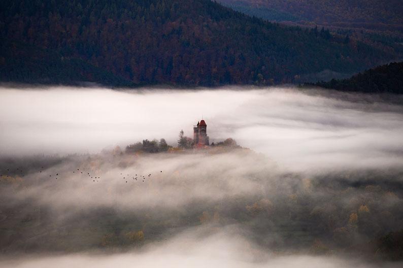 Burg Berwartstein Nebel Pfalz Pfälzerwald