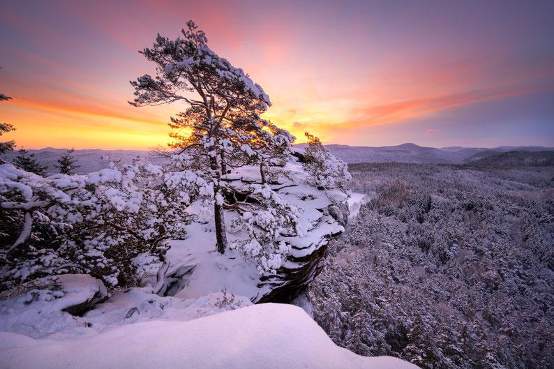 Pfalz Schlüsselfelsen Schnee Winter Pfälzerwald