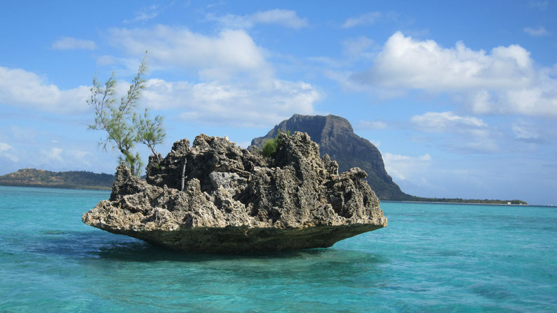 Fels im Meer Mauritius