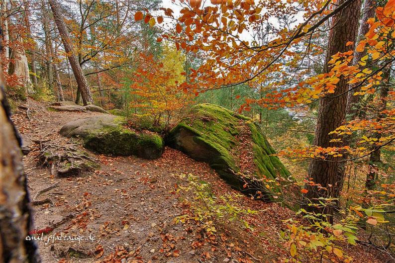 Auf dem Felsenwanderweg im Herbst