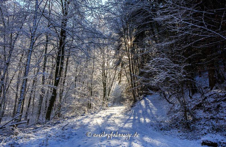 Winter Impressionen in der Langenbach - an der Bärenhöhle in Rodalben