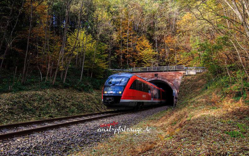 Bahn Triebwagen kommt aus dem Rodalber Tunnel