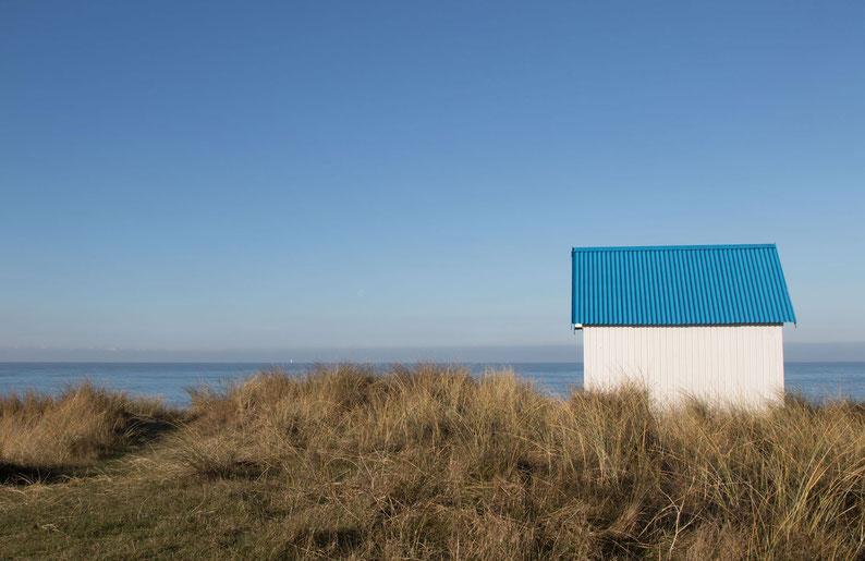 Ferienhaus, Normandie, Urlaub, Hund, Familienurlaub, Cotentin, Urlaub mit Hund