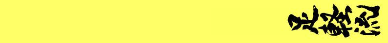 8e Kyu Geel: fudo dachi / kumite dachi / zenkutsu dachi / kiba dachi / yoi dachi / sanchin dachi / musubi dachi / kokutsu dachi / taikyoku sono ichi / taikyoku sono ni / taikyoku sono san / geri kata / kihon kata ichi / kihon kata ni / 10 ronden kumite