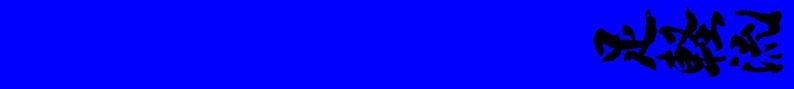 10e Kyu Blauw: fudo dachi / kumite dachi / zenkutsu dachi / kiba dachi / taikyoku sono ichi / geri kata / kihon kata ichi / 5 ronden kumite