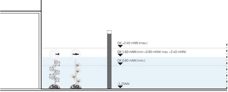 Prinzipschnitt Alsterfleet, Schwimmende Strukturen