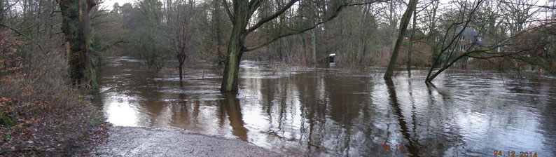 Überschwemmungslandschaft am Haselknick
