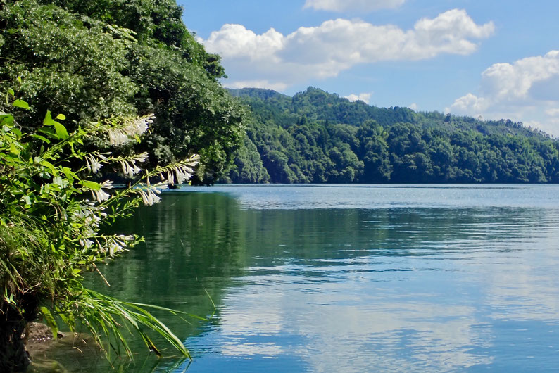 飛水湖の景観