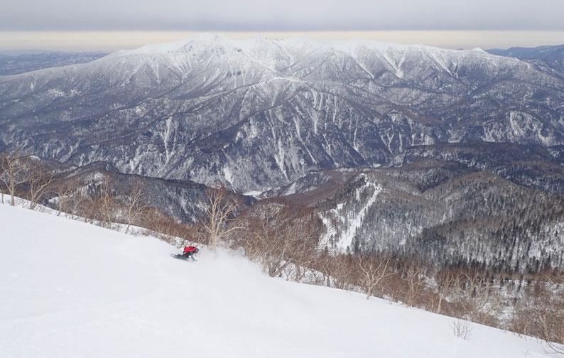 ニセイカウシュッペ山を望みなら黒岳を滑る