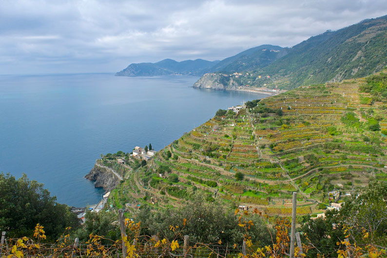 Hike the Cinque Terre - From Manterola to Riomaggiore