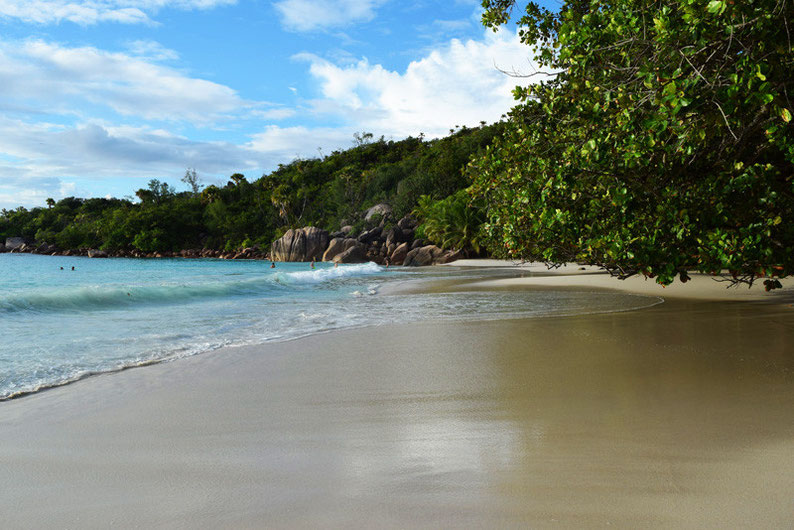 5 Things to do in the Seychelles Islands - Anse Lazion Beach on Praslin