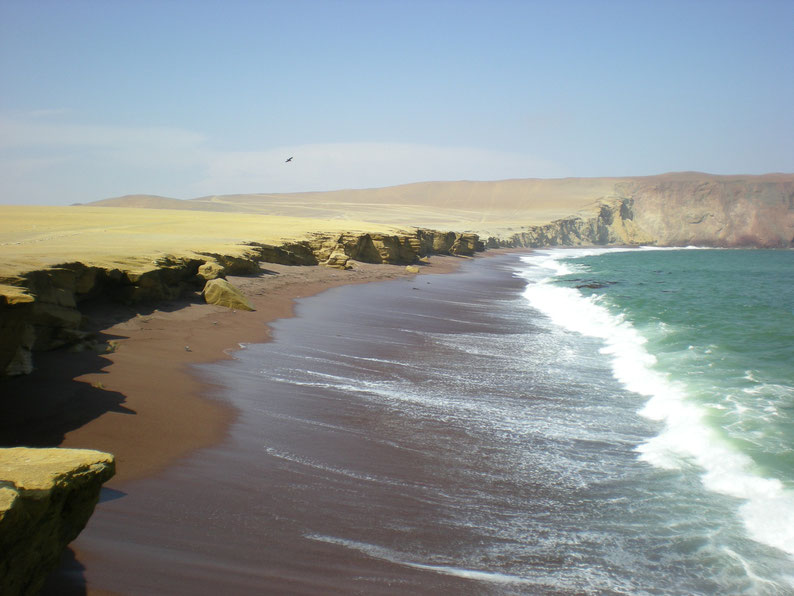 Peru and Bolivia in 3 weeks - Red coast, Paracas National Reserve