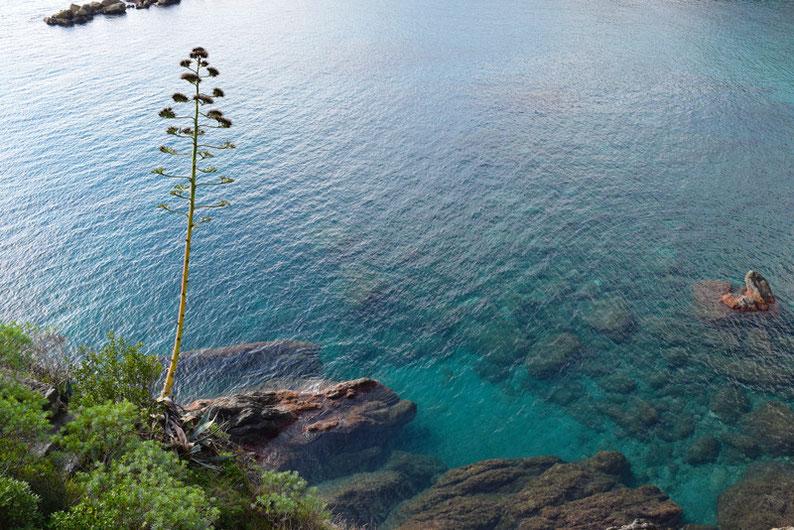 Hike the Cinque Terre - Monterosso, Italy