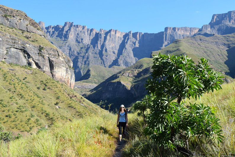 The Drakensberg Hike in South Africa