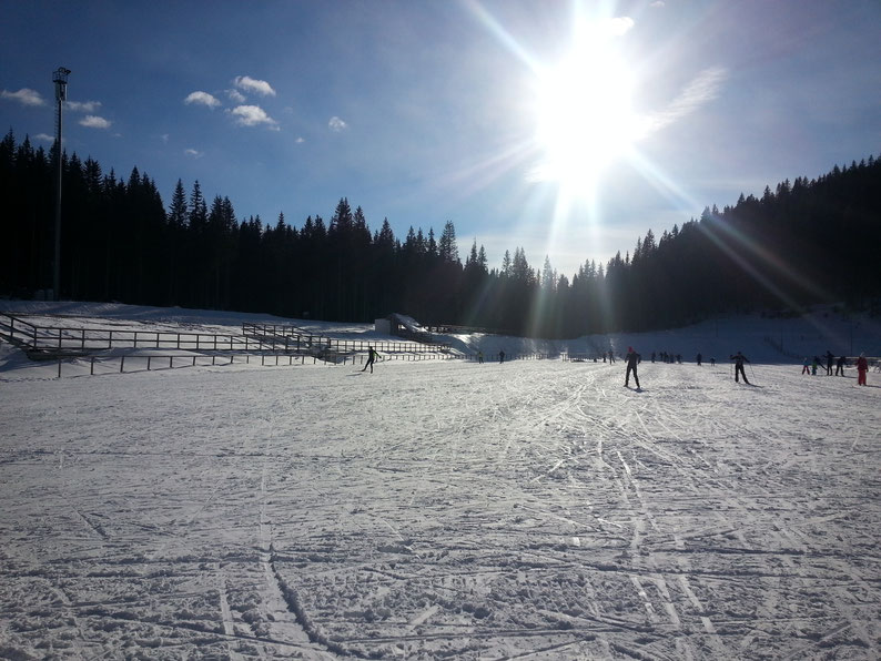 Why Slovenia Should Be Your Next Destination - Cross country skiing at Pokljuka, Slovenia