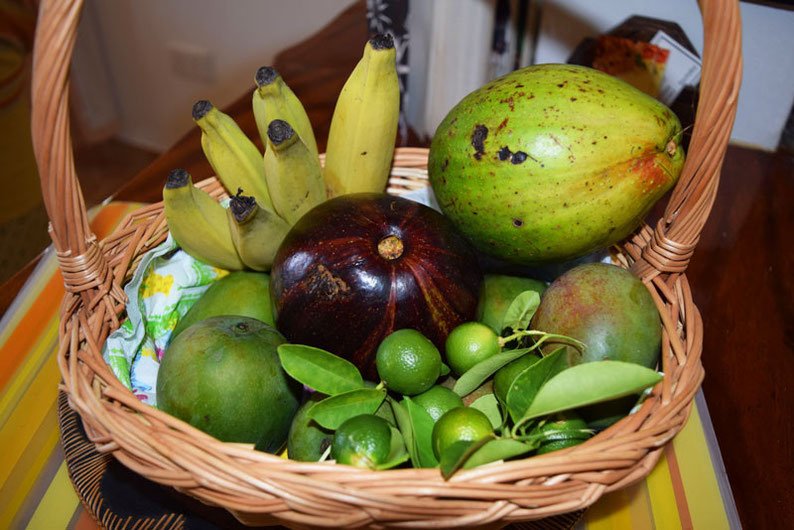 Our trip to the beautiful Seychelles islands - Garden fresh fruits