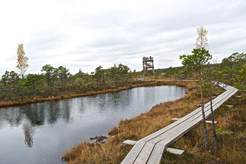 Kemeri National Park, Latvia
