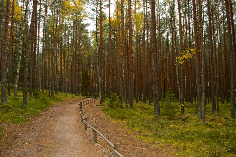Less travelled countries - Off the Beaten Path - Latvia