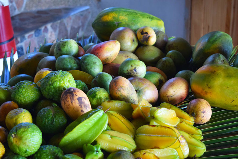 Get Seychelles' Best View at Nid d'Aigle - Lots of fruits waiting to be squeezed!!