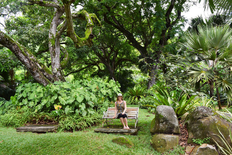 Our trip to the beautiful Seychelles islands - Visiting the botanical garden in Victoria, Mahe