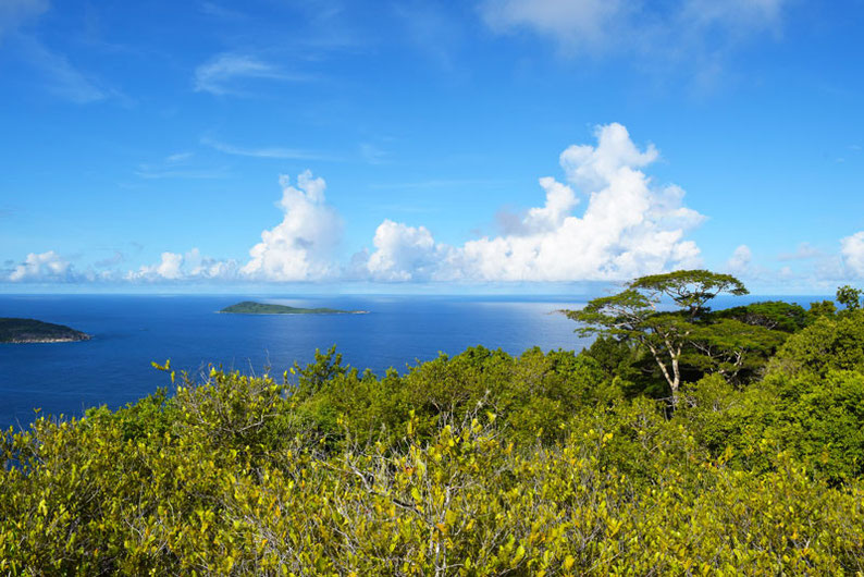 5 Things to Do in the Seychelles Islands - Nid d'Aigle