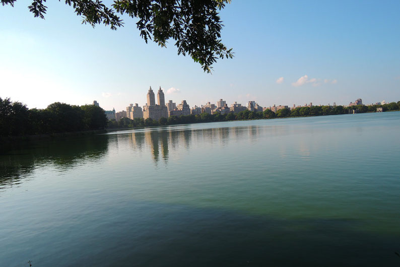 9 Spots to Enjoy the NYC Skyline - The Central Park