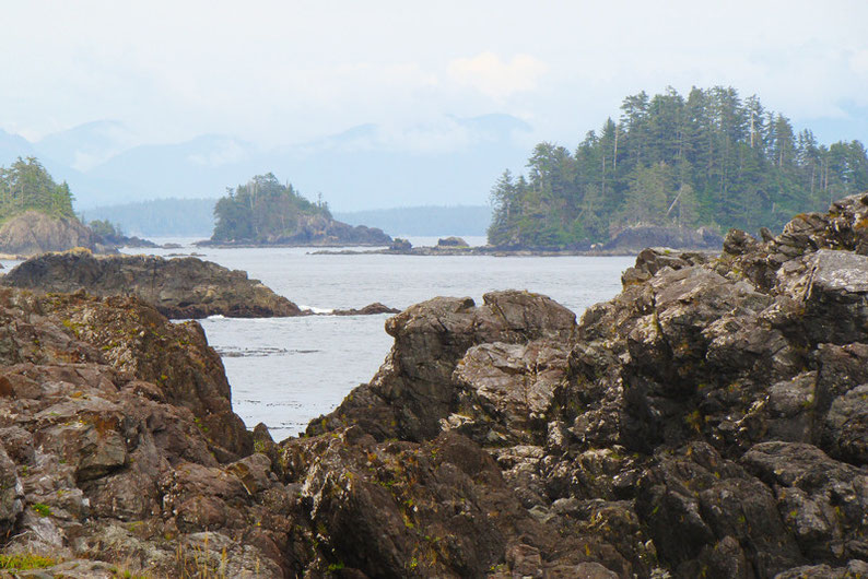 How to Spend 3 Weeks in Canada - Vancouver Island