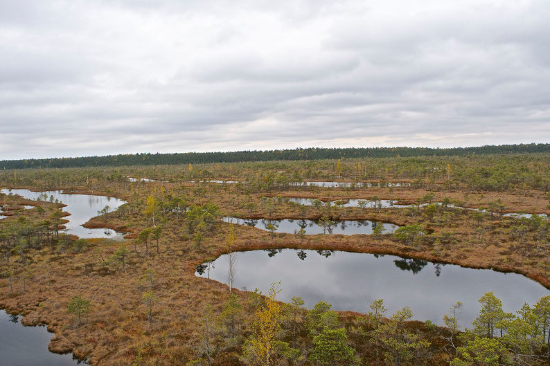Kemeri National Park, Latvia