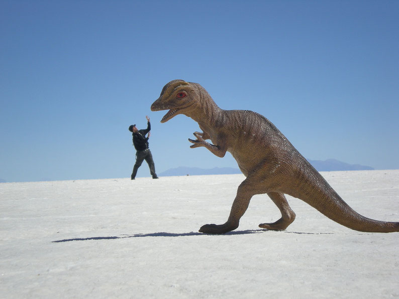 Jerry attacked by a dinosaur at the Uyuni salt flats, Bolivia in 2014