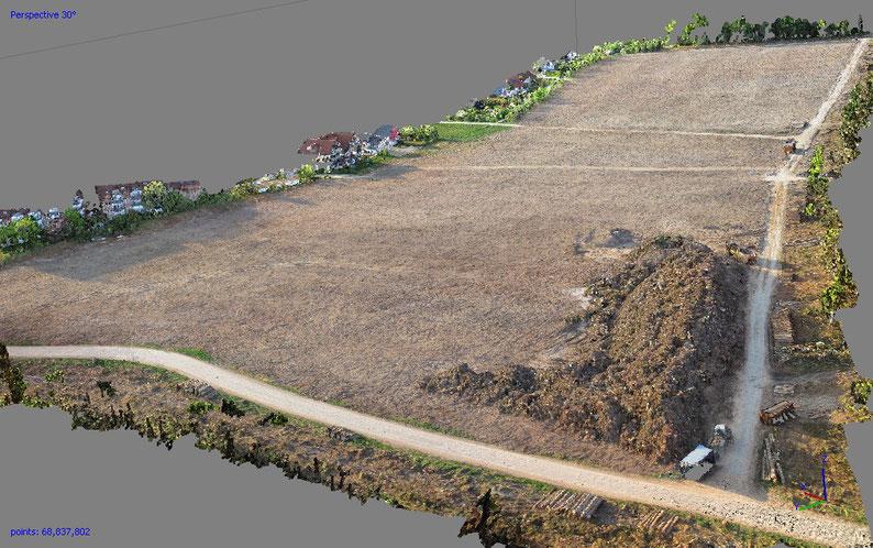 Punktwolke mit ca. 68 Mio. Punkten vor der Weiterbearbeitung zum Geländemodell