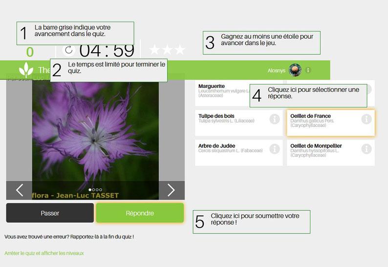 jeu pour d couvrir les plantes formation permaculture et jardin p dagogique en bourgogne. Black Bedroom Furniture Sets. Home Design Ideas